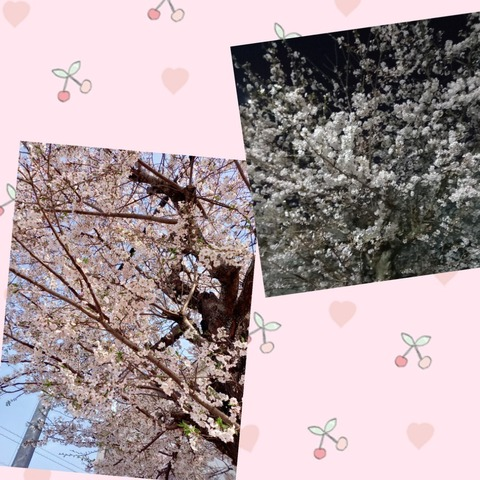 deco_2021-04-04_15-18-41.jpg